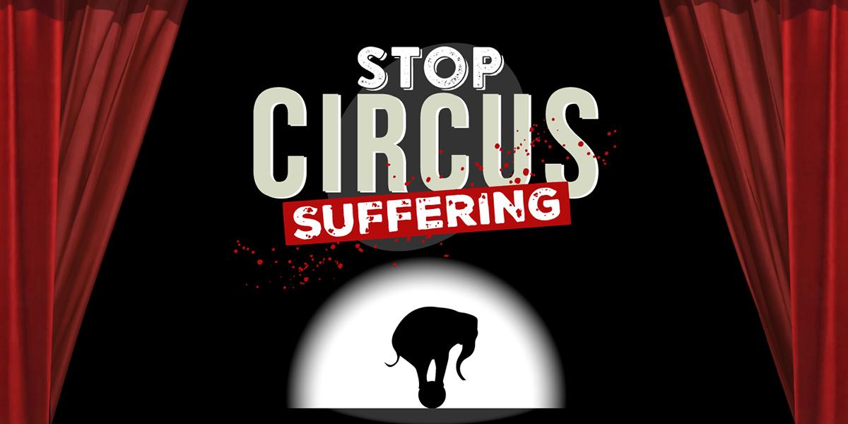 Stop Circus Suffering